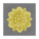 Gilded Rosette IV Giclee Print by  Vision Studio