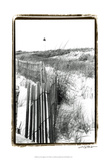 Cape May Lighthouse II Print by Laura Denardo