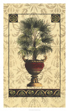 Palm of the Islands I Giclee Print by  Pizetta