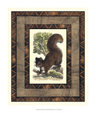 Rustic Squirrel Prints