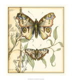 Tandem Butterflies I Affiches par Jennifer Goldberger