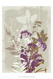 New Flora XI Prints by Ken Hurd
