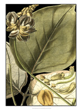 Tranquil Tropical Leaves I Giclee Print by  Vision Studio