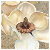 Magnolia Masterpiece I Prints by Louise Montillio