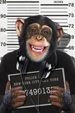 Chimp-Mugshot Poster