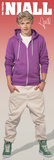 One Direction-Niall Posters