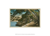 The Cote d'Azur IV Prints