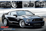 Ford Shelby 1000 Affiches