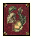 Pomme De Canada Giclee Print by Pierre D'Avoine