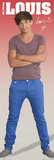 One Direction-Louis Affiches