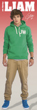 One Direction-Liam Posters
