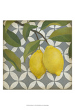 Fruit and Pattern I Prints by Megan Meagher