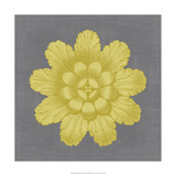 Gilded Rosette III Posters