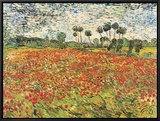 Field of Poppies, Auvers-Sur-Oise, c.1890 Framed Canvas Print by Vincent van Gogh