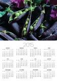 Pea Pods Posters by Clay Perry