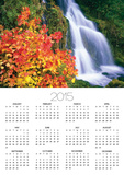Autumn Leaves by Rushing Waterfall Posters by Craig Tuttle