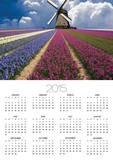 Windmill and Flower Field in Holland Posters by Jim Zuckerman
