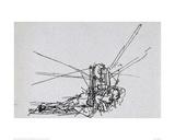 Flying Machine 2 Lámina giclée por  Leonardo da Vinci