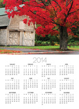Tree with Red Leaves and Barn Posters by Mark Karrass