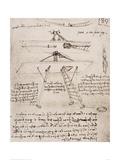 Flying Machine Drawing Lámina giclée por  Leonardo da Vinci