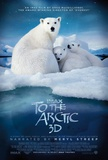 To The Arctic 3-D Affiche
