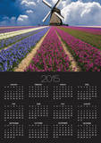 Windmill and Flower Field in Holland Prints by Jim Zuckerman