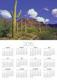 Forest of Cactus Posters by Robert Glusic
