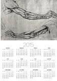 Study of Arms Posters by  Leonardo da Vinci