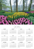 Spring Flowers in Flower Garden Posters by Jim Zuckerman