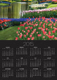 Spring Tulips by Stream Prints by Mark Bolton