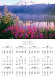 Wildflowers in Bloom by Lake on Mount Rainier Prints by Craig Tuttle