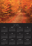 Unpaved Road in Autumn Posters by Cody Wood