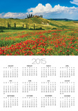 Farmhouse with Cypresses and Poppies Prints by Frank Krahmer