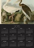 White Ibis Prints by John James Audubon