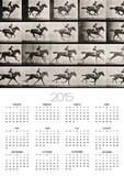 "Jockey on a Galloping Horse, Plate 627 from ""Animal Locomotion,"" 1887 Poster by Eadweard Muybridge"