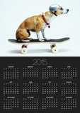 Dog with Helmet Skateboarding Posters by Chris Rogers