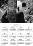 Panda Behind a Tree Posters by Keren Su