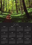 Path in beech forest Posters by Frank Krahmer