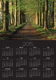 Tree-Lined Path Poster by Dave Bartruff