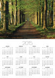 Tree-Lined Path Prints by Dave Bartruff