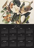 Black-Billed Cuckoo on Magnolia Grandiflora, 1828 Posters by John James Audubon