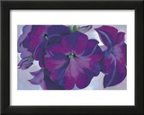 Petunias, c.1925 Print by Georgia O&#39;Keeffe