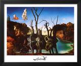 Salvador Dali Swans Reflecting Elephants White Border Art Print Poster Posters