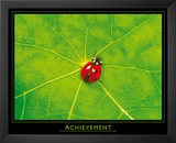 Ladybug (Achievement) Art Poster Print Prints