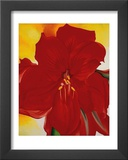 Red Amaryllis, c.1937 Prints by Georgia O'Keeffe