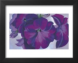 Petunias, c.1925 Prints by Georgia O'Keeffe