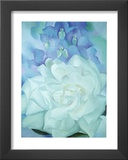 White Rose with Larkspur Art by Georgia O'Keeffe
