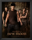 The Twilight Saga: New Moon Movie (Jacob, Group) Poster Print Print