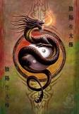 Anne Stokes : Le Dragon,  protection du Yin et du Yang Posters