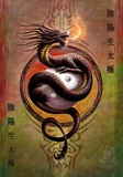 Anne Stokes - Yin Yang Protector Print